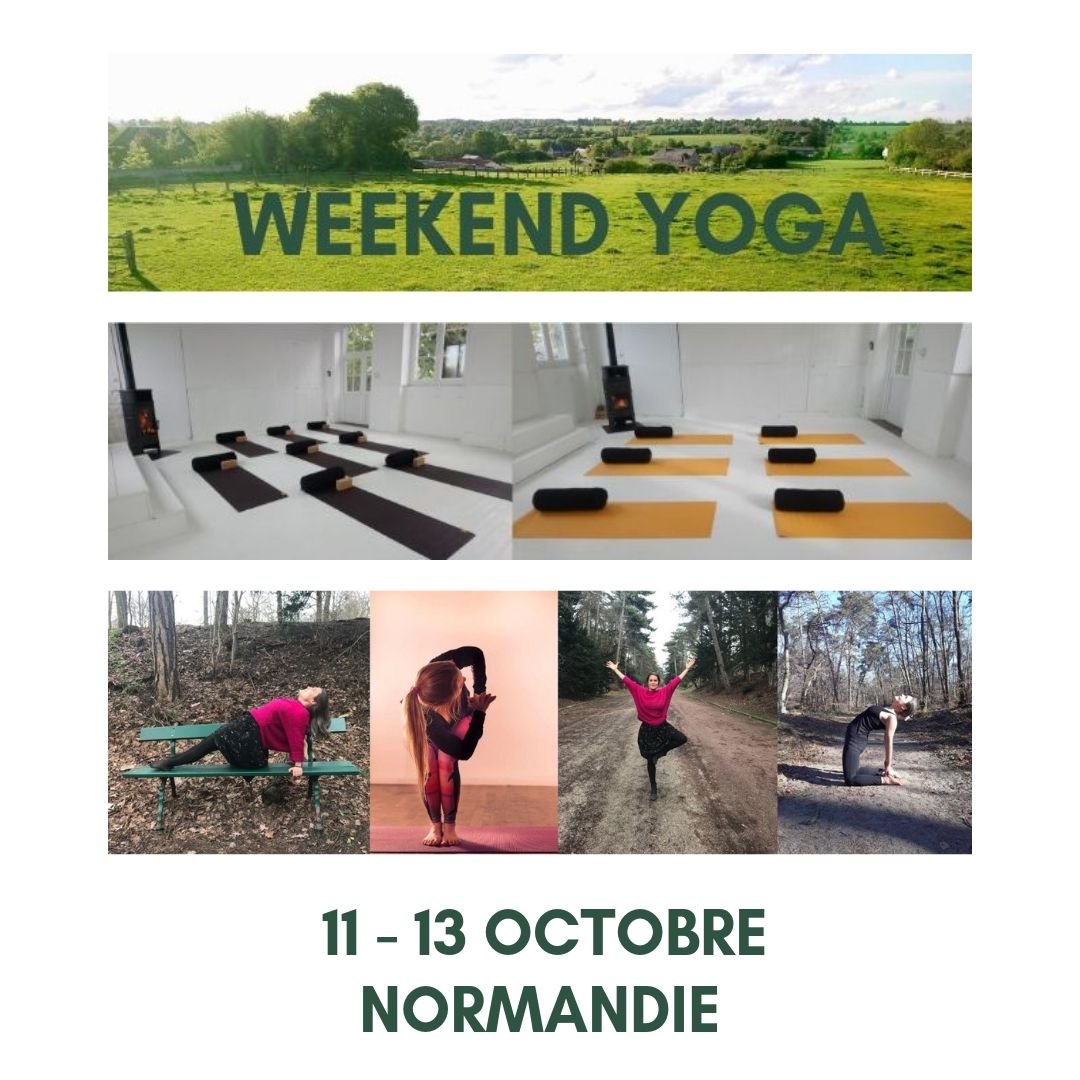 Weekend Yoga Ressourcement Flow Nidra Vinyasa Octobre Normandie