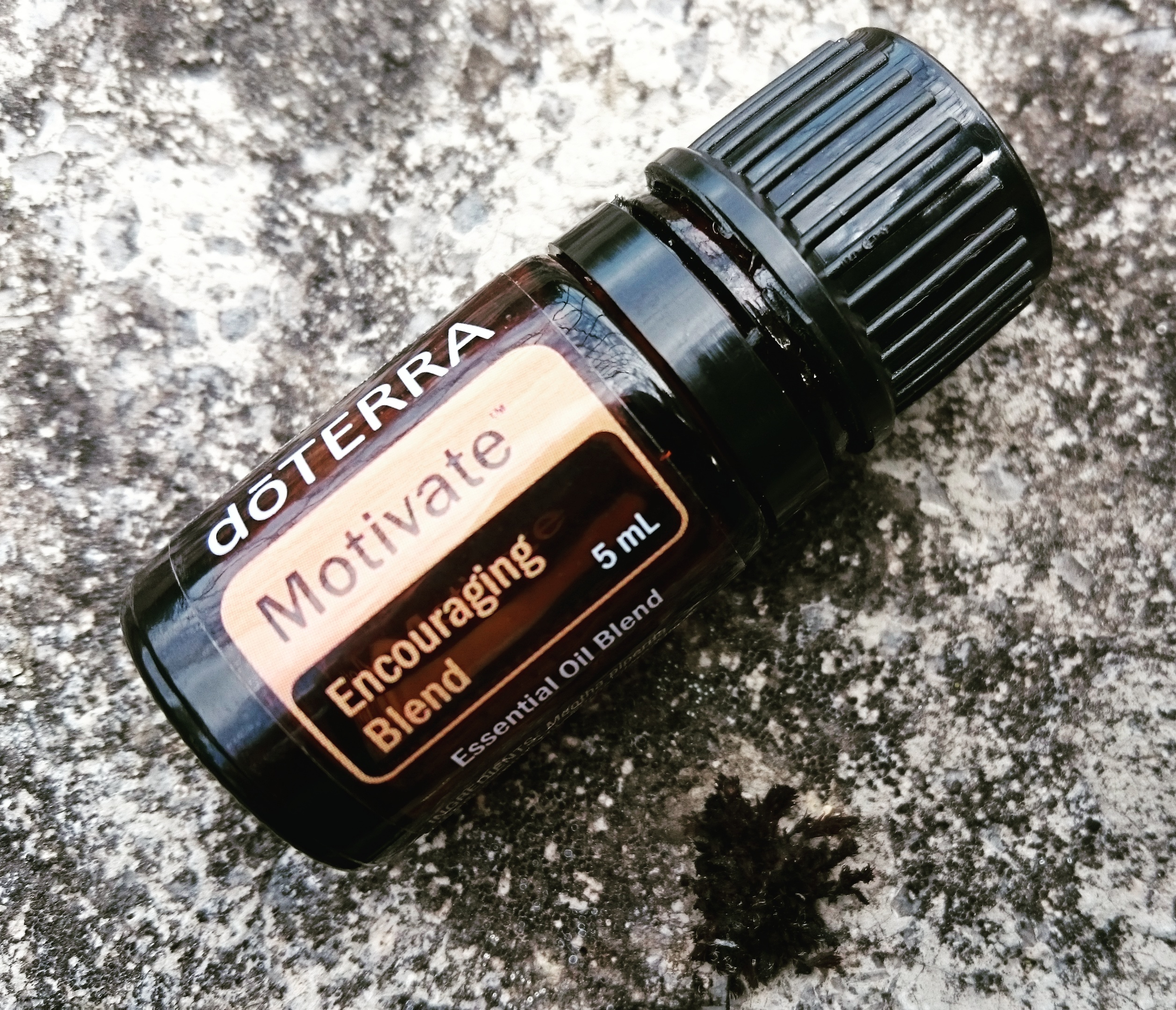 Motivate Blend Mélange Motivation Concentration doTerra